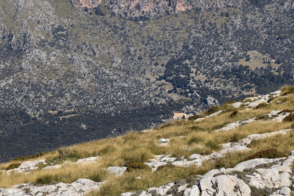 Mallorca Massanella Lluc