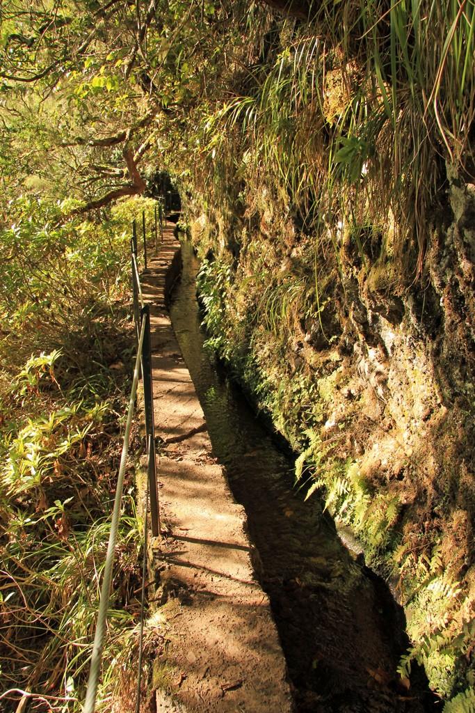 Hike Caldeirao Verde