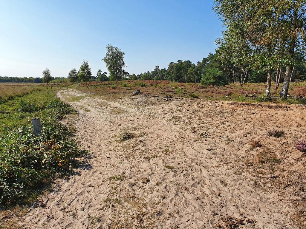 Wandelroute Ree Kalmthoutse Heide