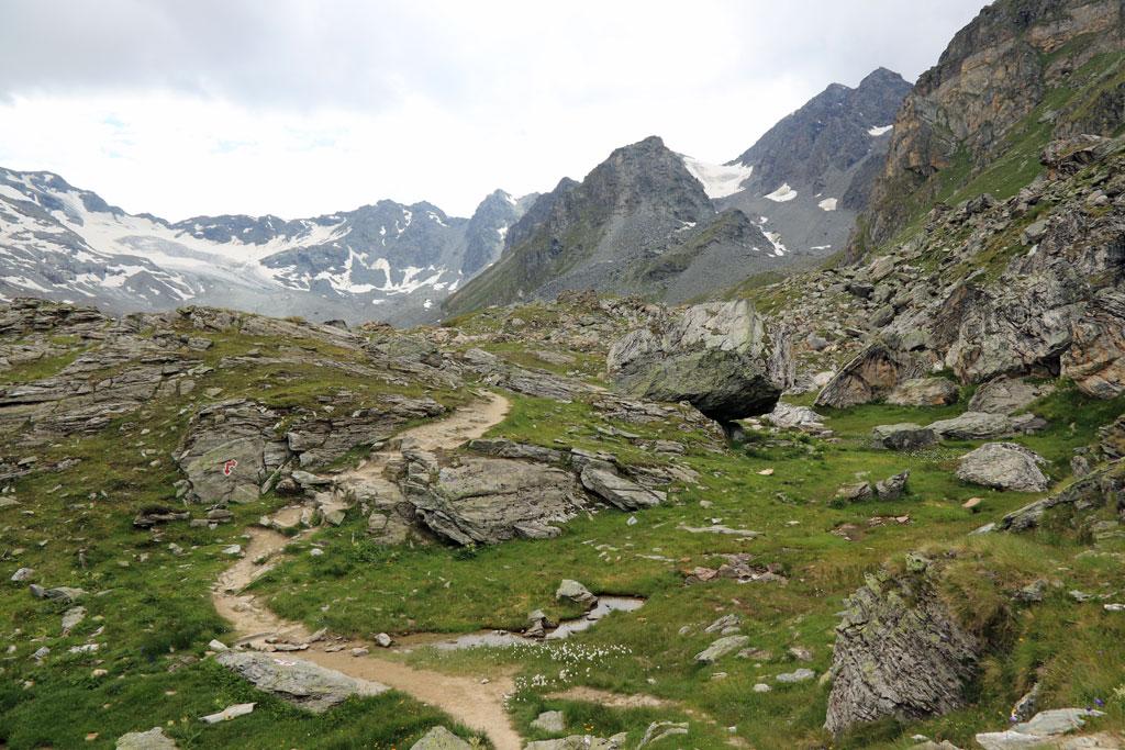 Steinbock Höhenweg Lac des Dix