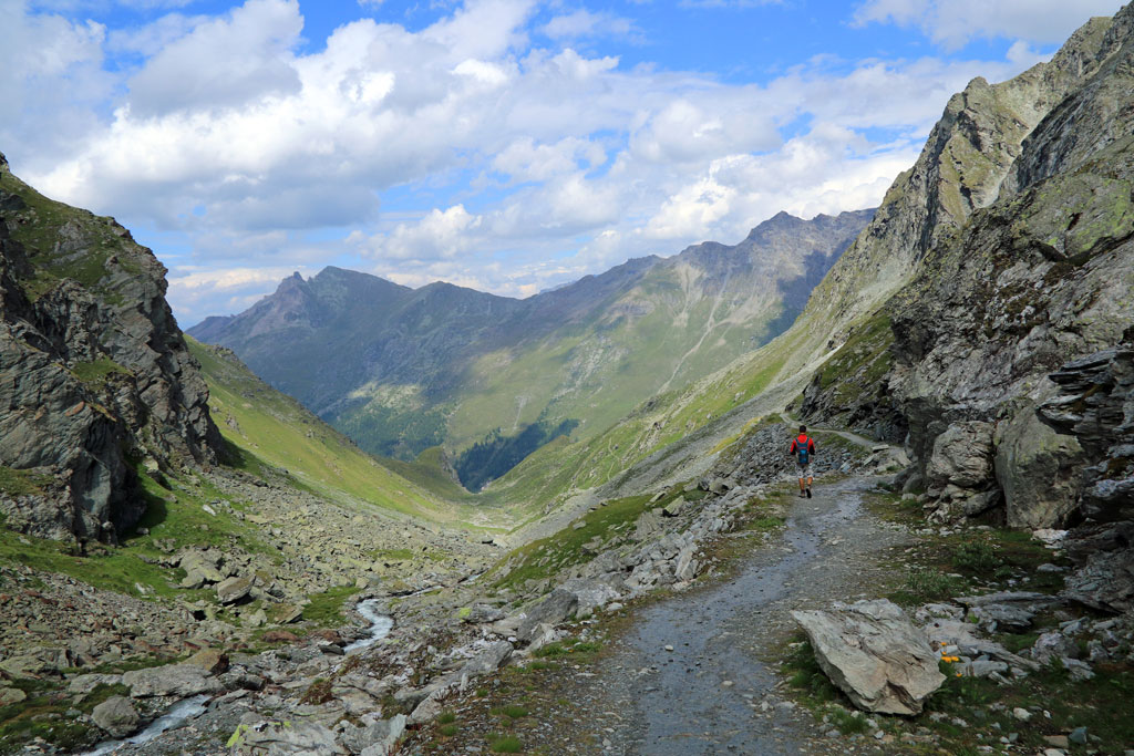 Steinbock Höhenweg Prafleuri vallei
