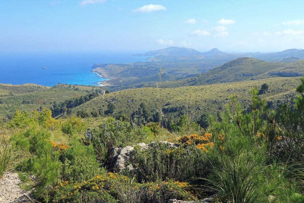 Parc Natural Llevant Mallorca