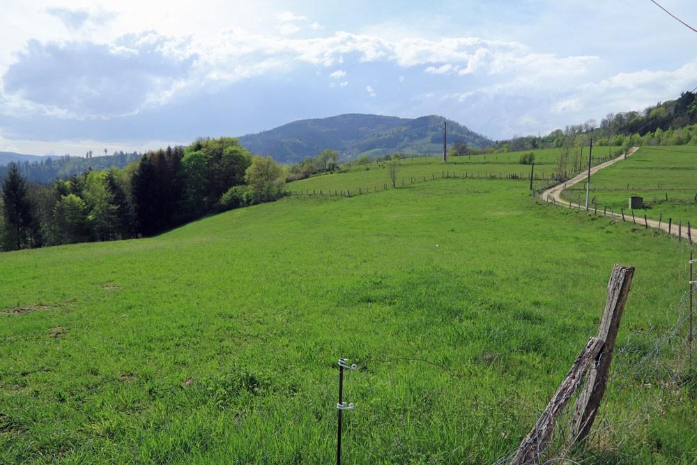 Surpense Ste-Croix-aux-Mines