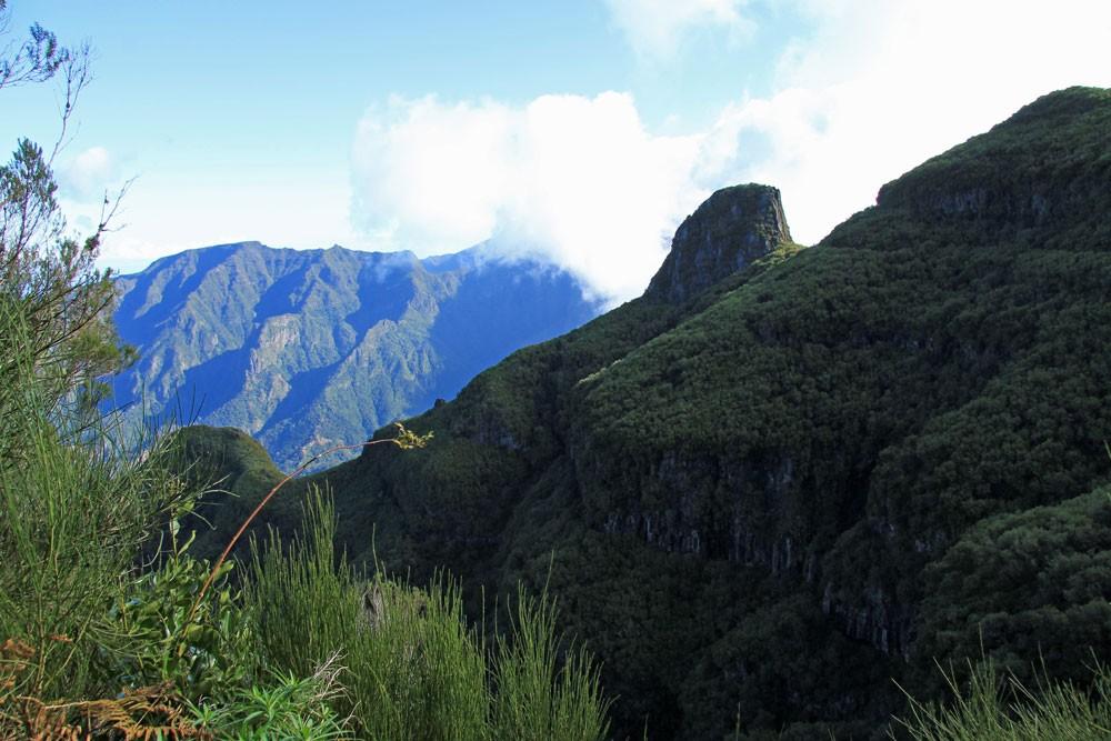 Pinaculo Madeira